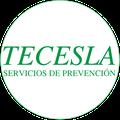 Tecesla Logo